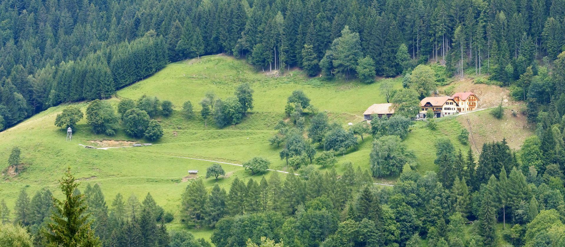 ARBAJTER - KOTNIK (»FARMA  JELENOV«)