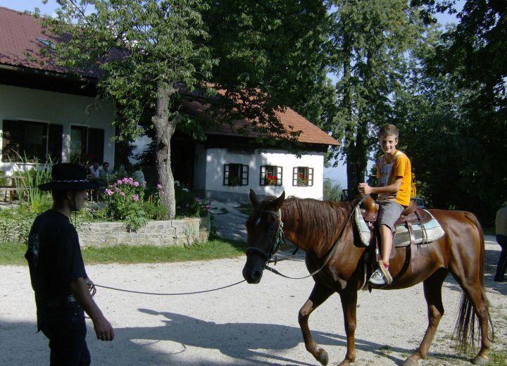 ŠINKOVC